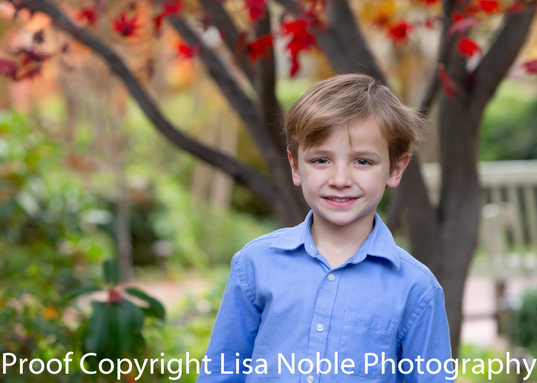 Bay Area Professional Family Photography in Palo Alto