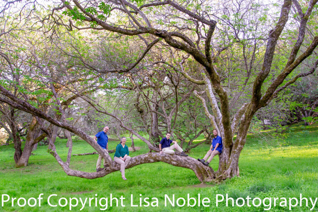 Family Photography in Menlo Park in the Bay Area